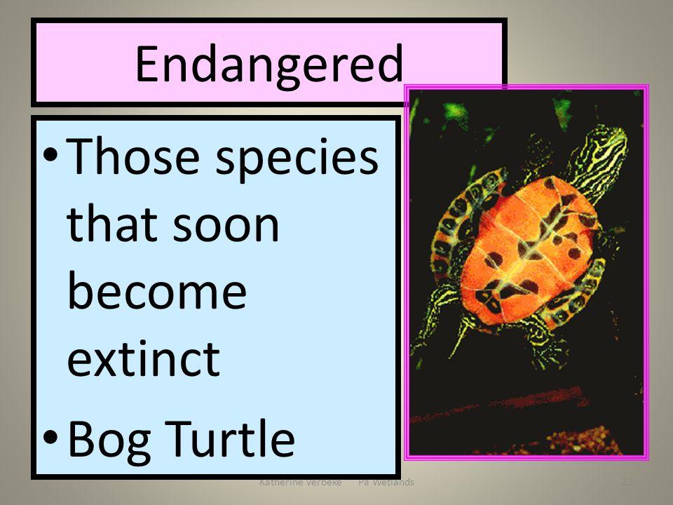 Katherine Verbeke Pa Wetlands23 Endangered Those species that soon become extinct Bog Turtle