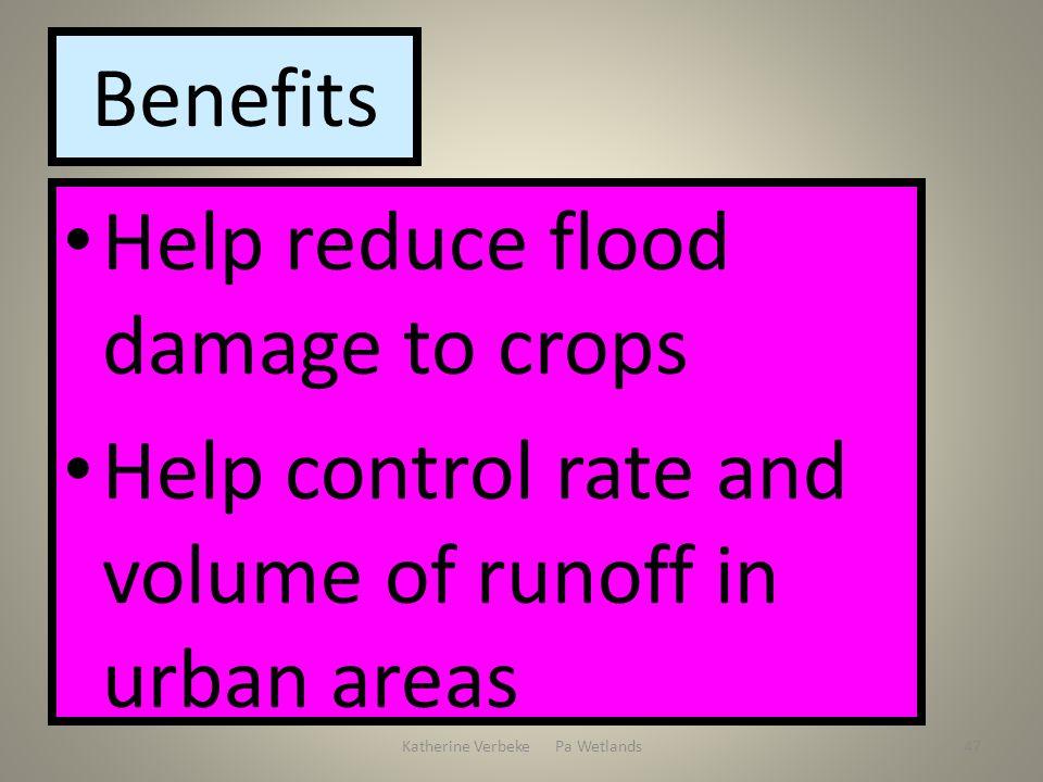 Katherine Verbeke Pa Wetlands47 Benefits Help reduce flood damage to crops Help control rate and volume of runoff in urban areas