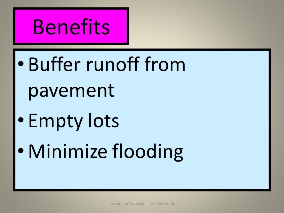 Katherine Verbeke Pa Wetlands58 Benefits Buffer runoff from pavement Empty lots Minimize flooding
