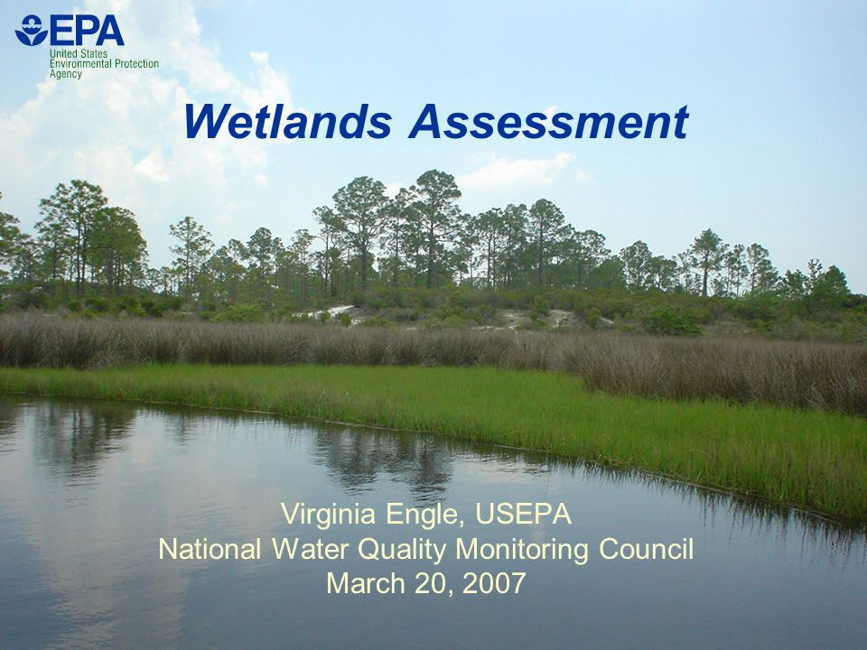 Wetlands Assessment Virginia Engle, USEPA National Water Quality Monitoring Council March 20, 2007