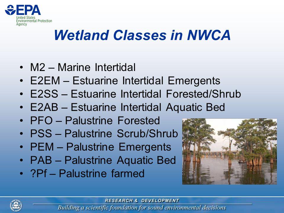 Wetland Classes in NWCA M2 – Marine Intertidal E2EM – Estuarine Intertidal Emergents E2SS – Estuarine Intertidal Forested/Shrub E2AB – Estuarine Inter