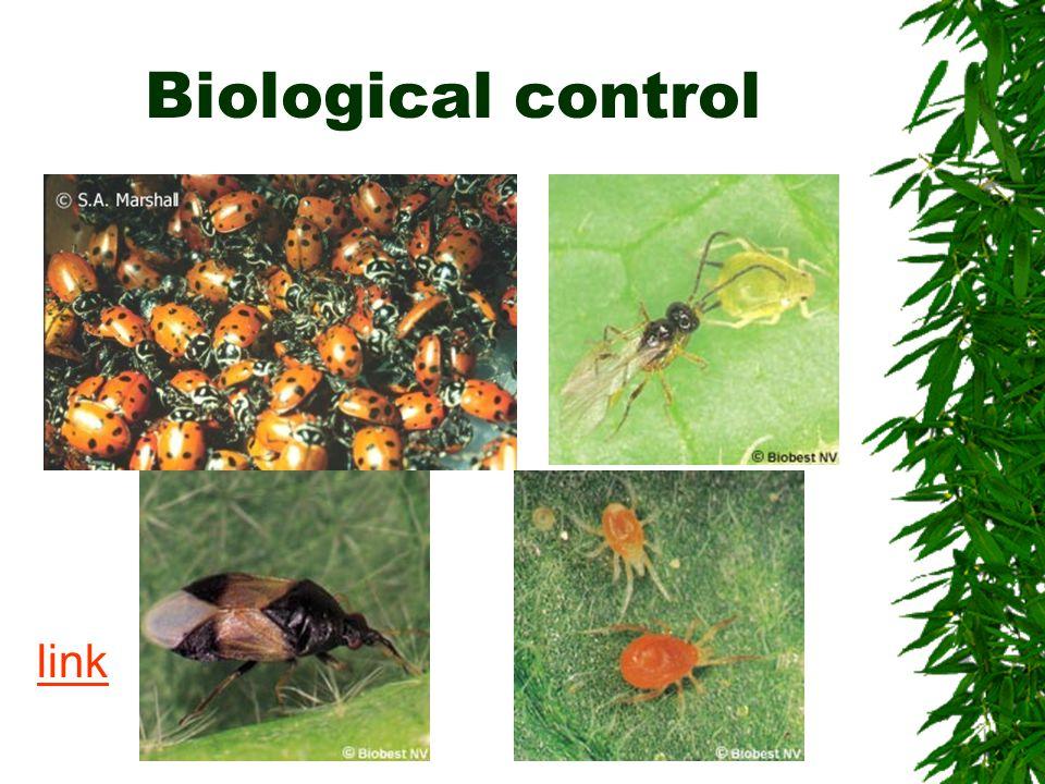 Biological control link