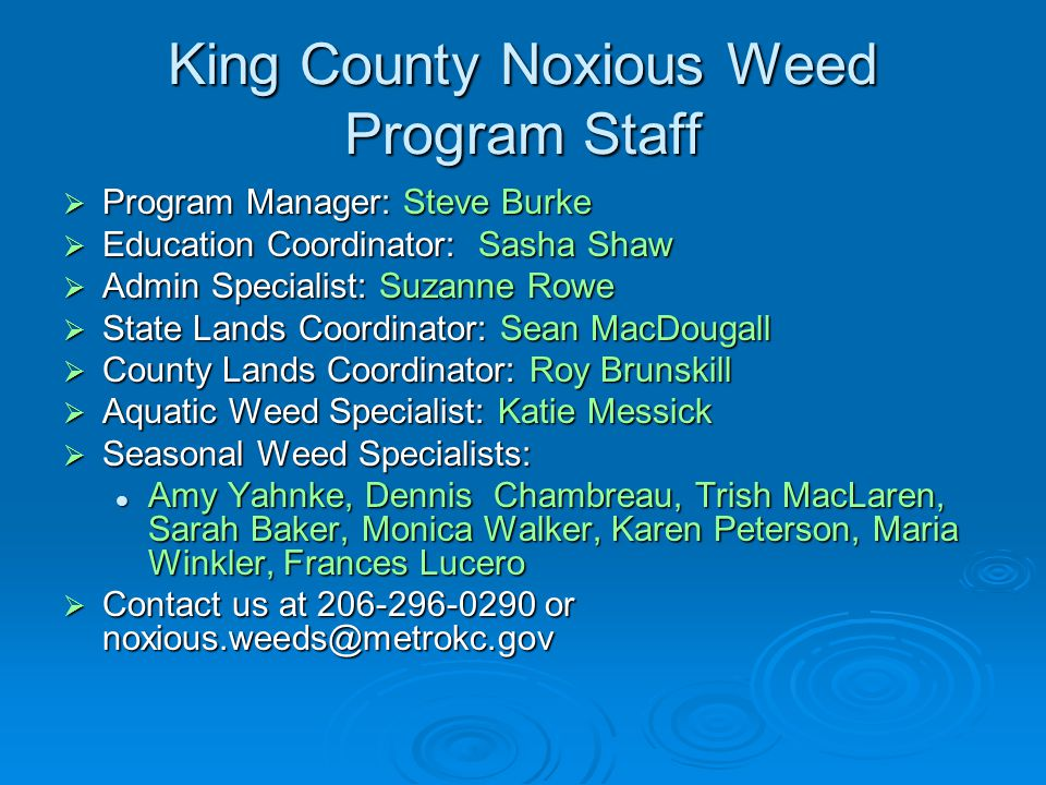 King County Noxious Weed Program Staff  Program Manager: Steve Burke  Education Coordinator: Sasha Shaw  Admin Specialist: Suzanne Rowe  State Lands Coordinator: Sean MacDougall  County Lands Coordinator: Roy Brunskill  Aquatic Weed Specialist: Katie Messick  Seasonal Weed Specialists: Amy Yahnke, Dennis Chambreau, Trish MacLaren, Sarah Baker, Monica Walker, Karen Peterson, Maria Winkler, Frances Lucero Amy Yahnke, Dennis Chambreau, Trish MacLaren, Sarah Baker, Monica Walker, Karen Peterson, Maria Winkler, Frances Lucero  Contact us at 206-296-0290 or noxious.weeds@metrokc.gov