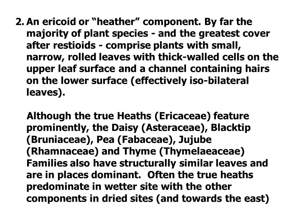 2.An ericoid or heather component.