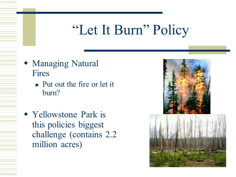 Let It Burn Policy  Managing Natural Fires Put out the fire or let it burn.