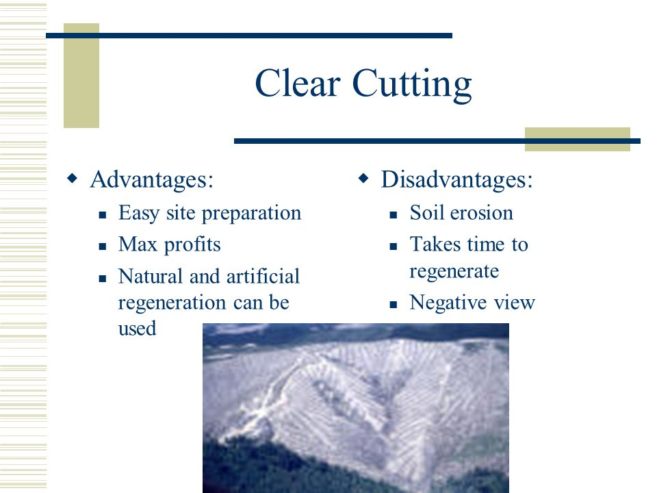 Clear Cutting  Advantages: Easy site preparation Max profits Natural and artificial regeneration can be used  Disadvantages: Soil erosion Takes time to regenerate Negative view