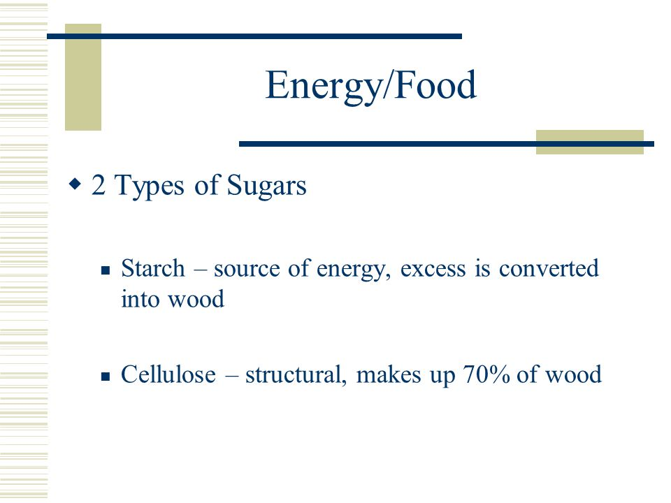Energy/Food  2 Types of Sugars Starch – source of energy, excess is converted into wood Cellulose – structural, makes up 70% of wood
