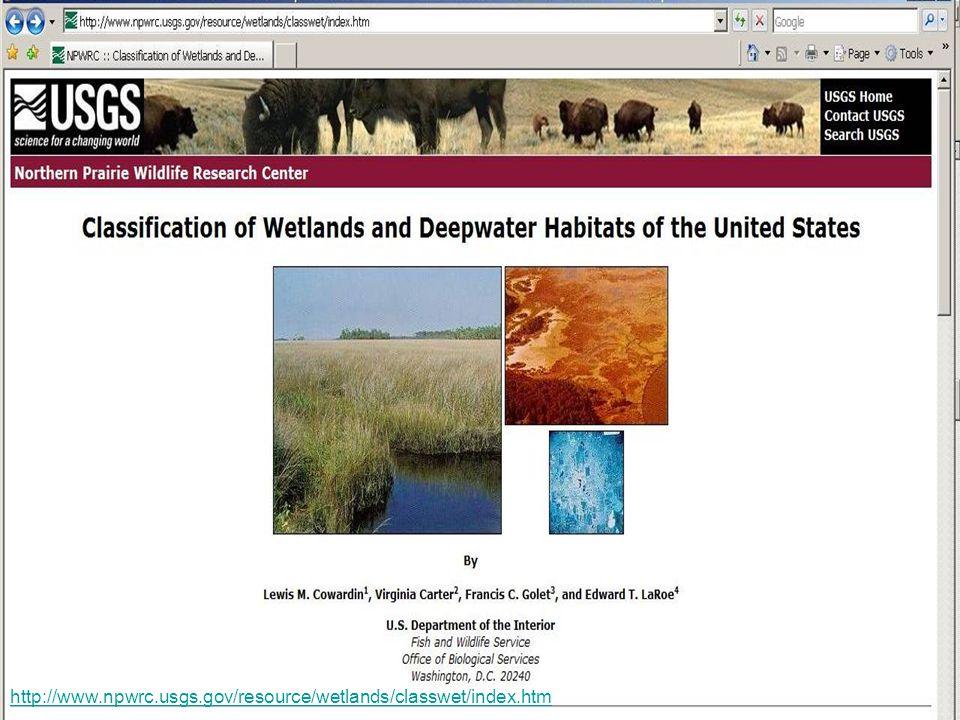 http://www.npwrc.usgs.gov/resource/wetlands/classwet/index.htm