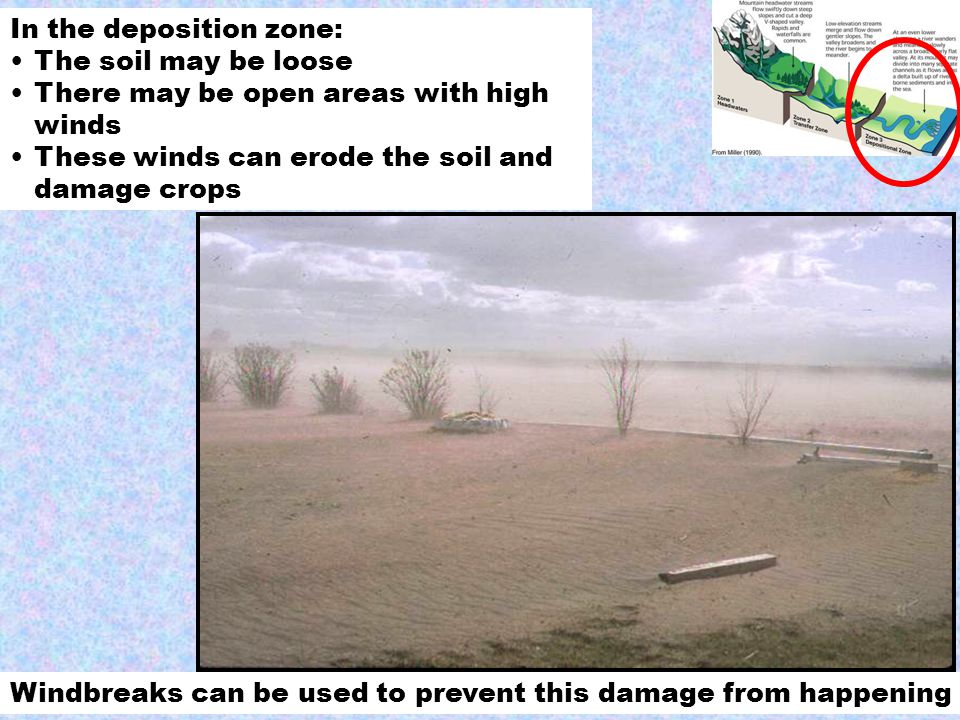 In the deposition zone: The soil may be loose There may be open areas with high winds These winds can erode the soil and damage crops Windbreaks can be used to prevent this damage from happening