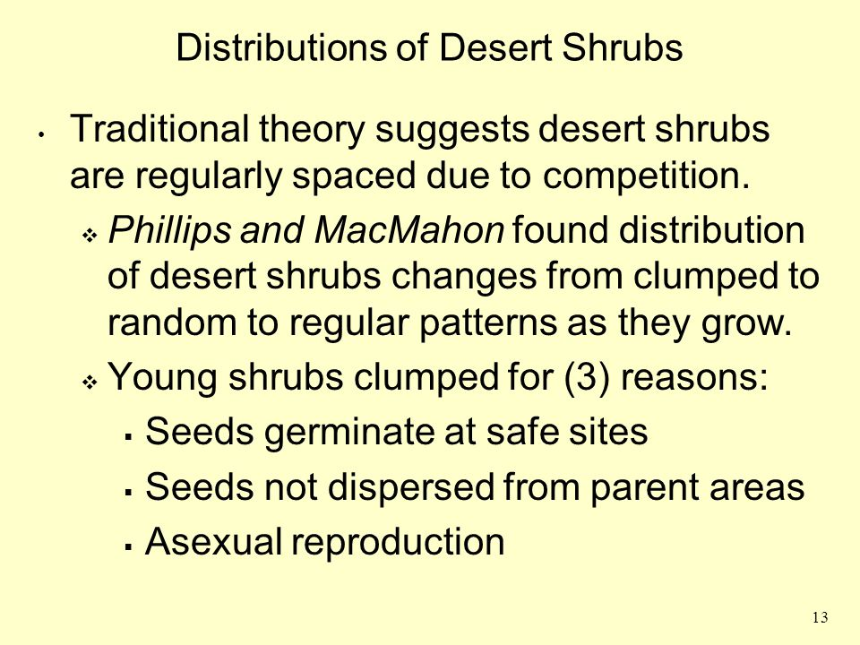 13 Distributions of Desert Shrubs Traditional theory suggests desert shrubs are regularly spaced due to competition.  Phillips and MacMahon found dis