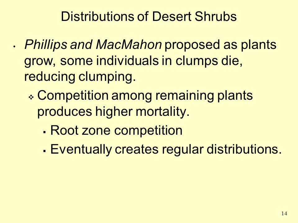 14 Distributions of Desert Shrubs Phillips and MacMahon proposed as plants grow, some individuals in clumps die, reducing clumping.  Competition amon