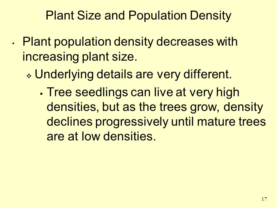 17 Plant Size and Population Density Plant population density decreases with increasing plant size.  Underlying details are very different.  Tree se
