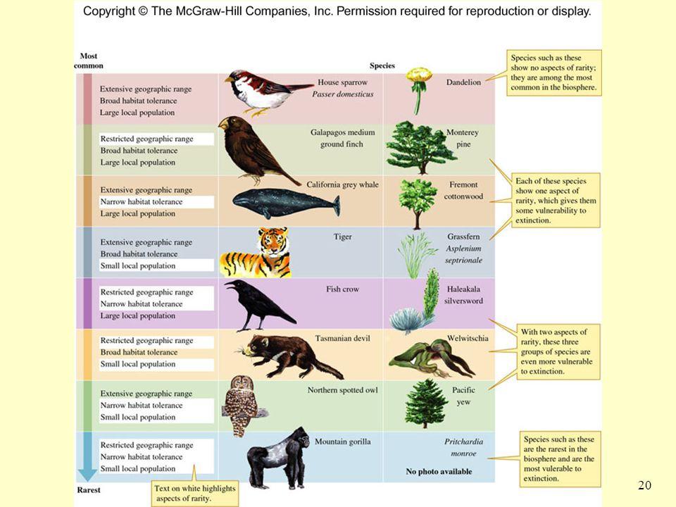 21 Rarity Rarity I  Extensive Range, Broad Habitat Tolerance, Small Local Populations  Peregrine Falcon Rarity II  Extensive Rage, Large Populations, Narrow Habitat Tolerance  Passenger Pigeon