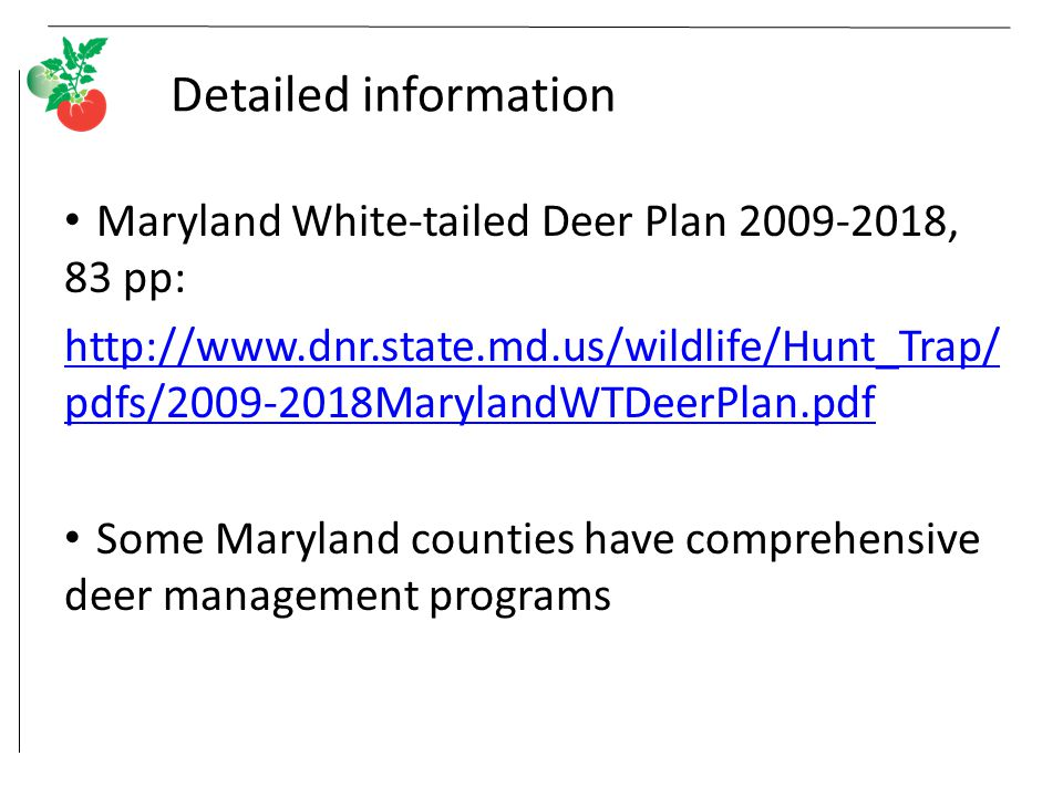 Detailed information Maryland White-tailed Deer Plan 2009-2018, 83 pp: http://www.dnr.state.md.us/wildlife/Hunt_Trap/ pdfs/2009-2018MarylandWTDeerPlan.pdf Some Maryland counties have comprehensive deer management programs