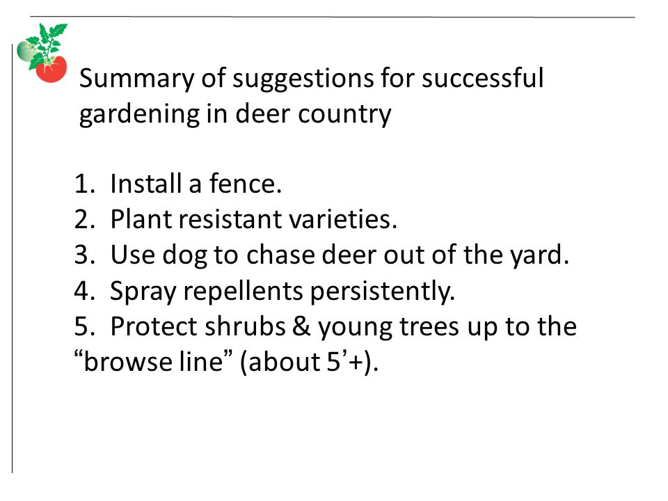Summary of suggestions for successful gardening in deer country 1.
