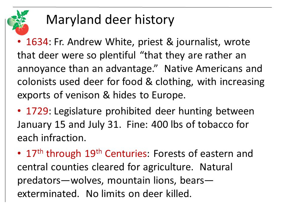 Maryland deer history 1634: Fr.