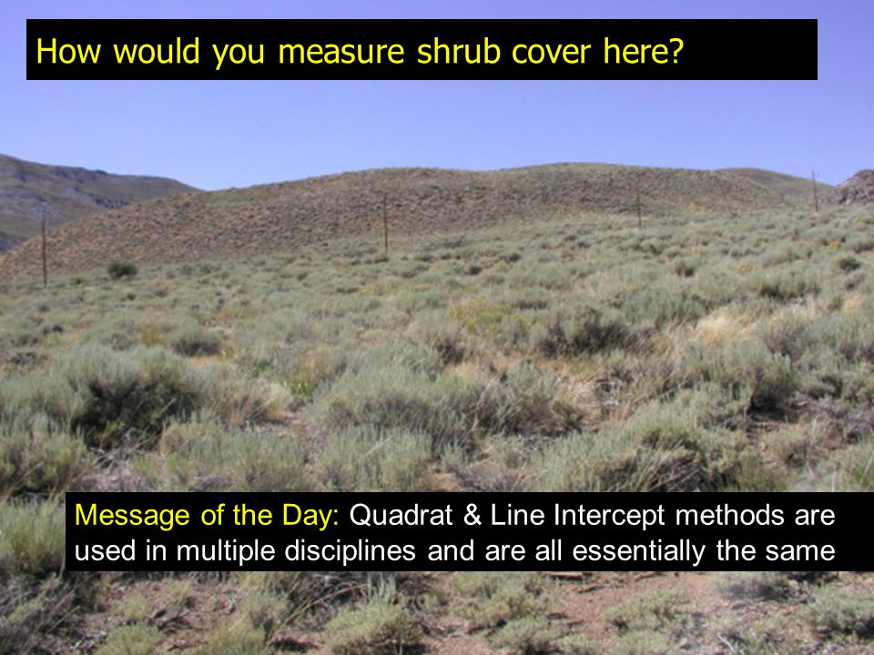 How would you measure shrub cover here? Message of the Day: Quadrat & Line Intercept methods are used in multiple disciplines and are all essentially