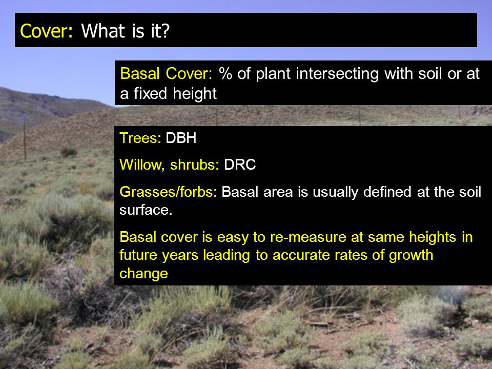Cover: What is it? Basal Cover: % of plant intersecting with soil or at a fixed height Trees: DBH Willow, shrubs: DRC Grasses/forbs: Basal area is usu
