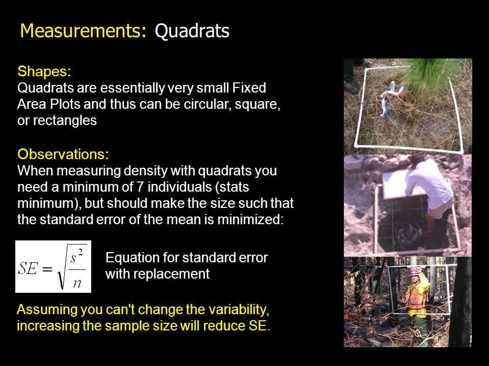 Measurements: Quadrats Shapes: Quadrats are essentially very small Fixed Area Plots and thus can be circular, square, or rectangles Observations: When measuring density with quadrats you need a minimum of 7 individuals (stats minimum), but should make the size such that the standard error of the mean is minimized: Equation for standard error with replacement Assuming you can t change the variability, increasing the sample size will reduce SE.