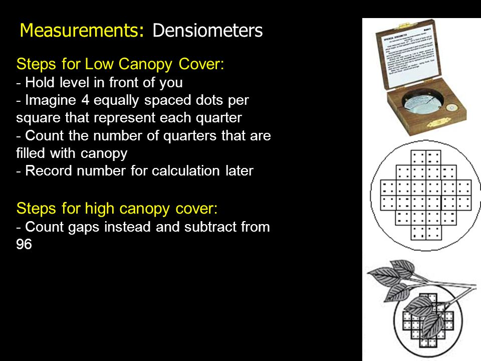 Measurements: Densiometers Steps for Low Canopy Cover: - Hold level in front of you - Imagine 4 equally spaced dots per square that represent each quarter - Count the number of quarters that are filled with canopy - Record number for calculation later Steps for high canopy cover: - Count gaps instead and subtract from 96
