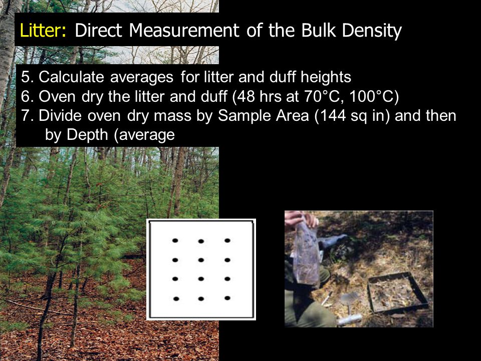 Litter: Direct Measurement of the Bulk Density 5.Calculate averages for litter and duff heights 6.