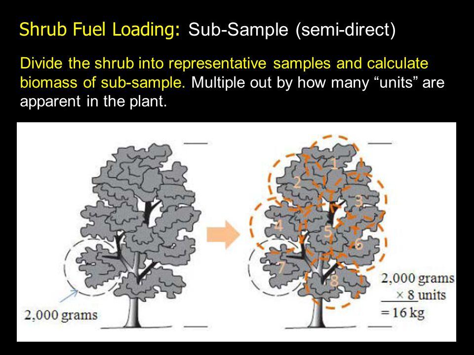 Shrub Fuel Loading: Sub-Sample (semi-direct) Divide the shrub into representative samples and calculate biomass of sub-sample.