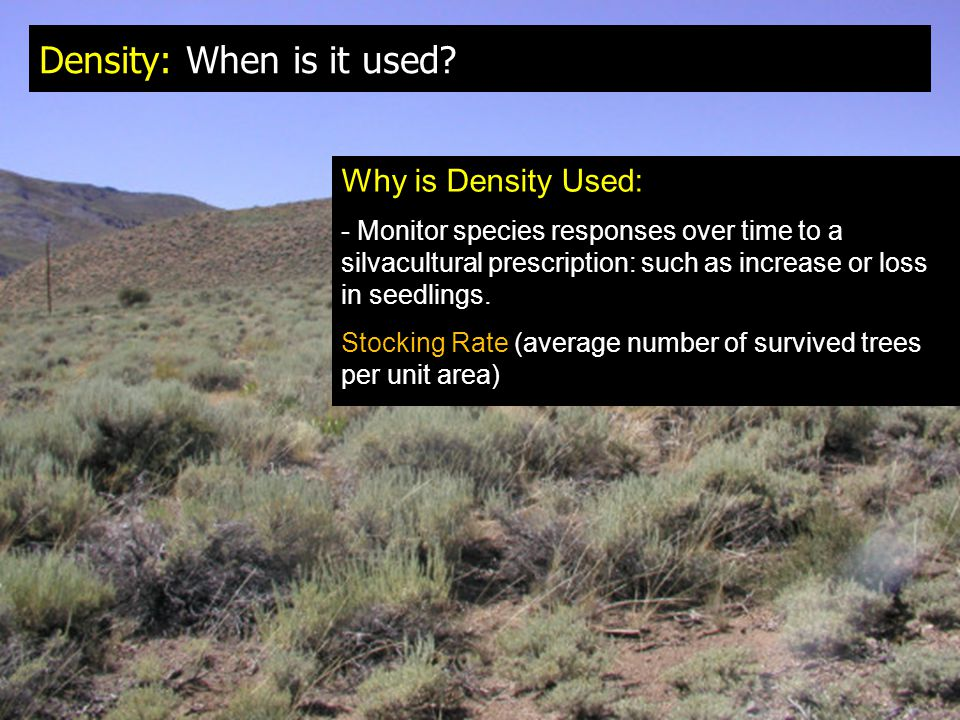 Density: When is it used? Why is Density Used: - Monitor species responses over time to a silvacultural prescription: such as increase or loss in seed