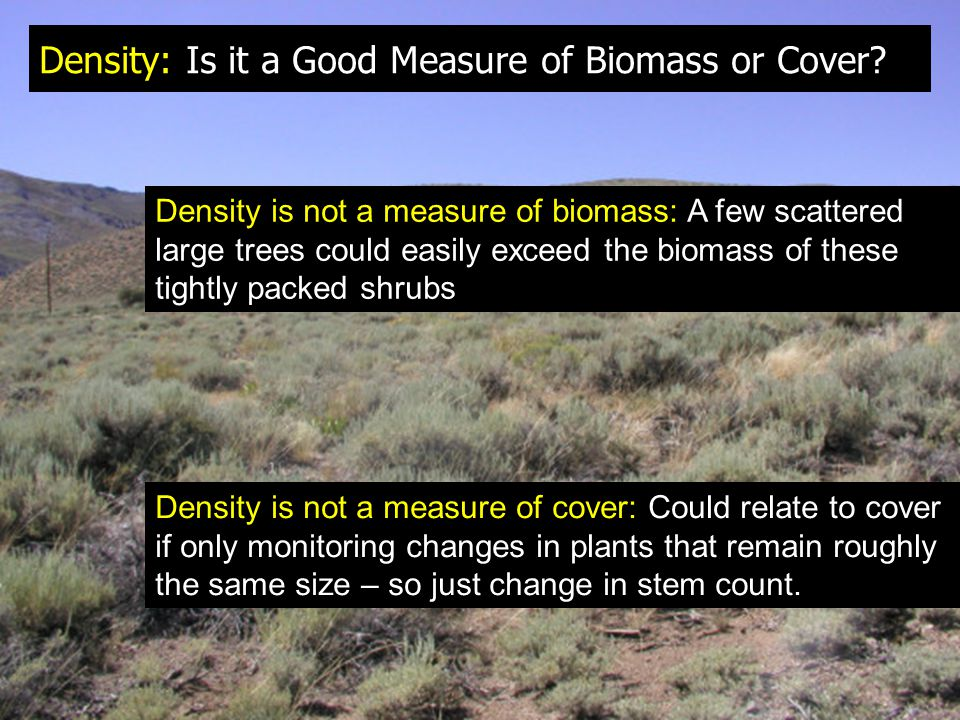 Density: Is it a Good Measure of Biomass or Cover? Density is not a measure of biomass: A few scattered large trees could easily exceed the biomass of
