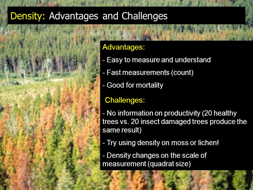 Density: Advantages and Challenges Advantages: - Easy to measure and understand - Fast measurements (count) - Good for mortality Challenges: - No information on productivity (20 healthy trees vs.