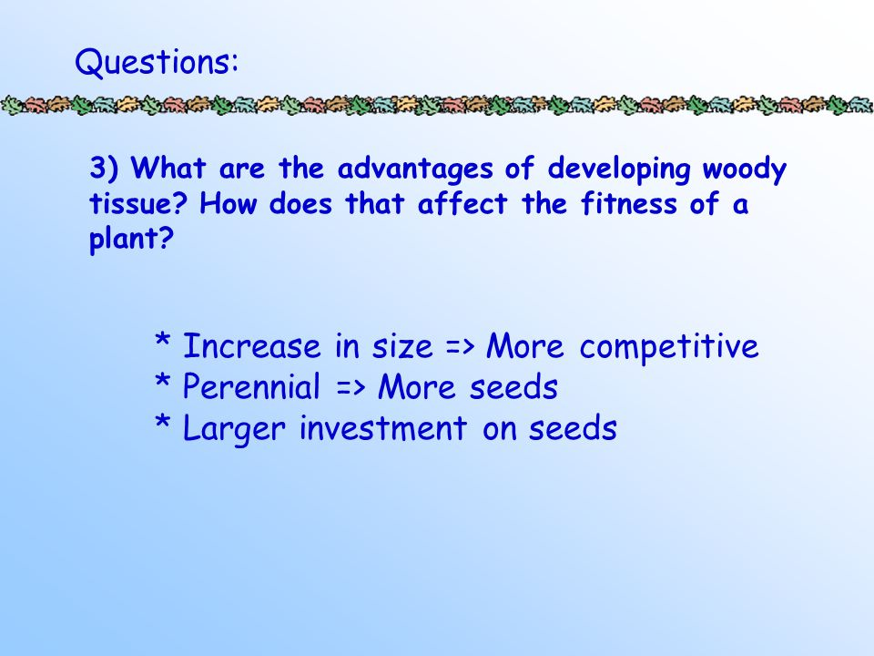 3) What are the advantages of developing woody tissue.