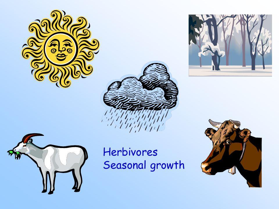 Herbivores Seasonal growth