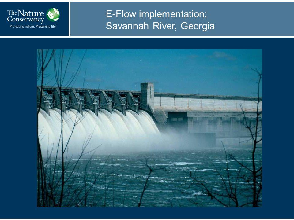 E-Flow implementation: Savannah River, Georgia
