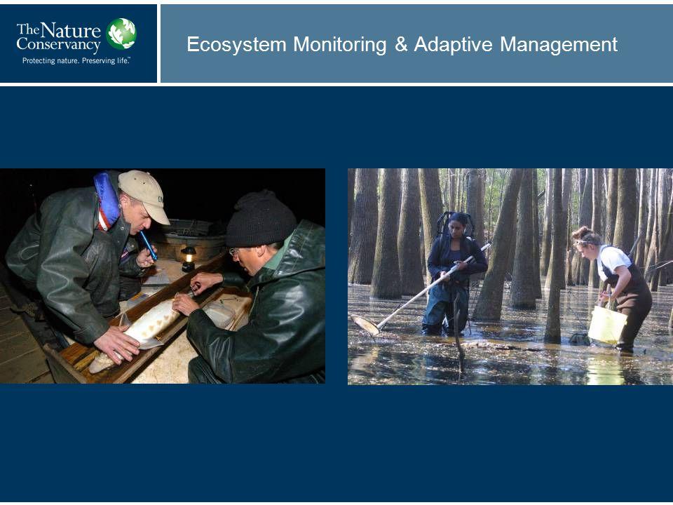 Ecosystem Monitoring & Adaptive Management