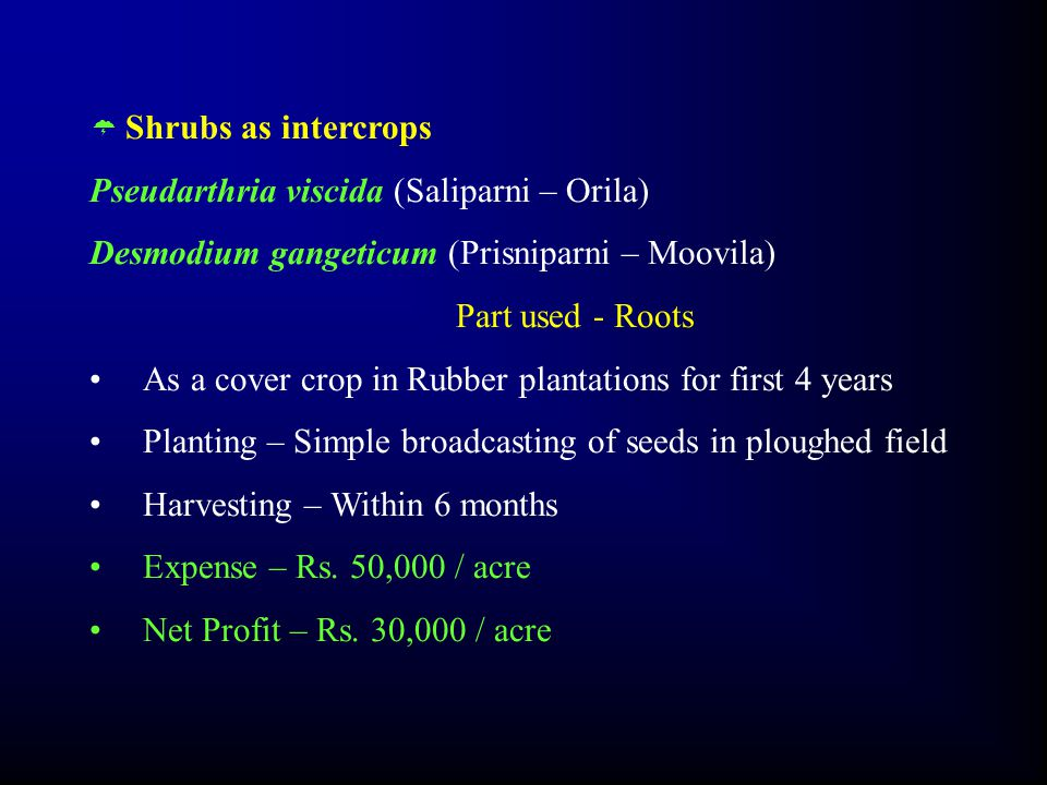  Shrubs as intercrops Pseudarthria viscida (Saliparni – Orila) Desmodium gangeticum (Prisniparni – Moovila) Part used - Roots As a cover crop in Rubber plantations for first 4 years Planting – Simple broadcasting of seeds in ploughed field Harvesting – Within 6 months Expense – Rs.