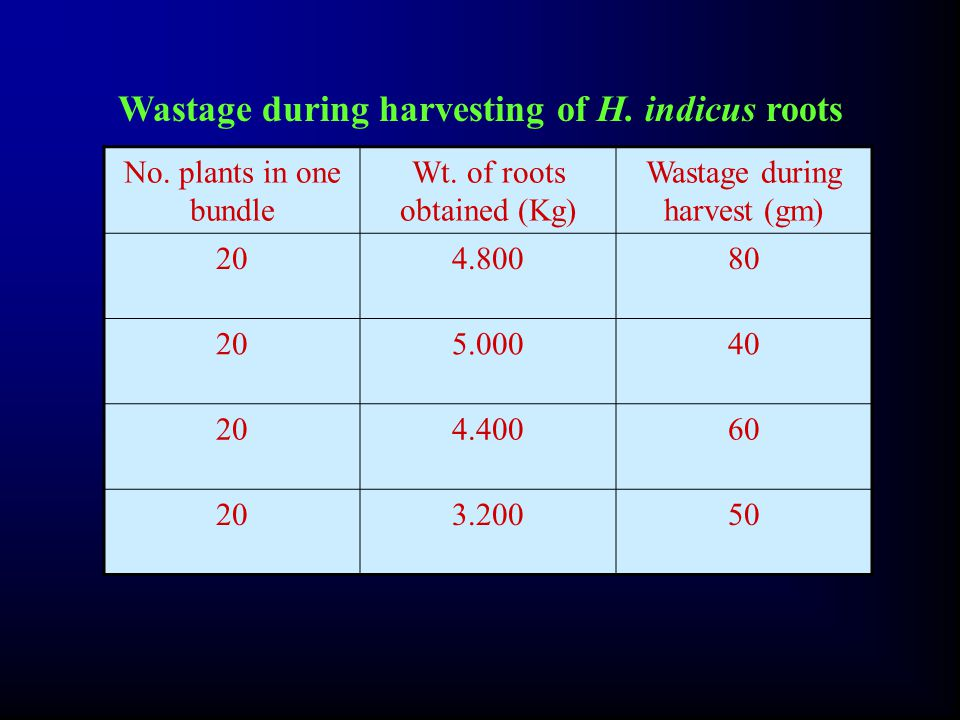 Wastage during harvesting of H.indicus roots No. plants in one bundle Wt.