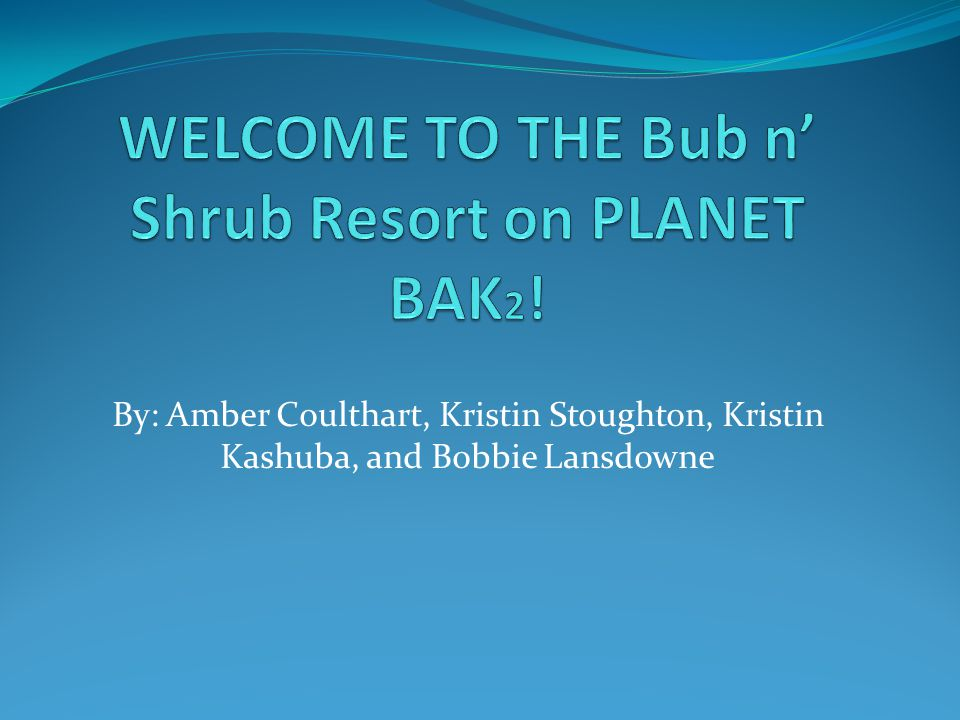 By: Amber Coulthart, Kristin Stoughton, Kristin Kashuba, and Bobbie Lansdowne