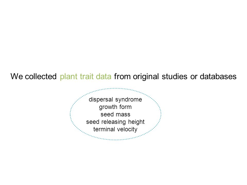 We collected plant trait data from original studies or databases dispersal syndrome growth form seed mass seed releasing height terminal velocity