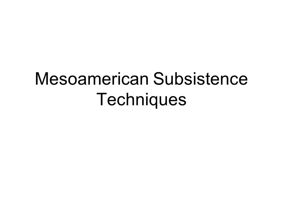 Mesoamerican Subsistence Techniques