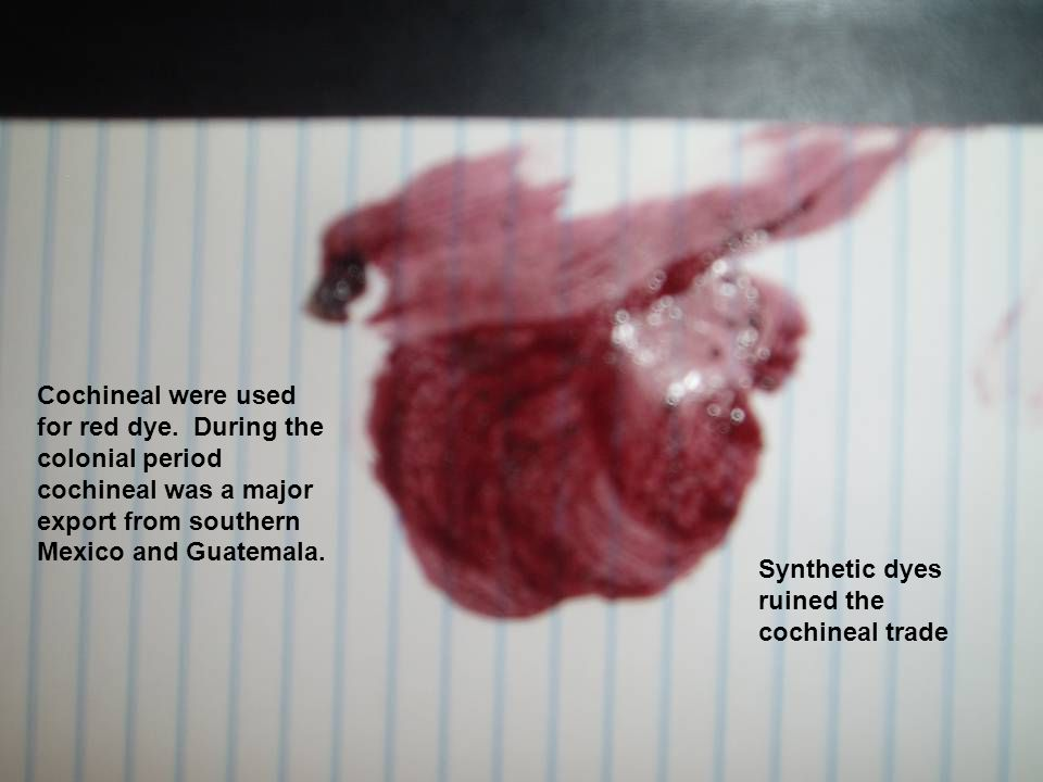 Cochineal were used for red dye.