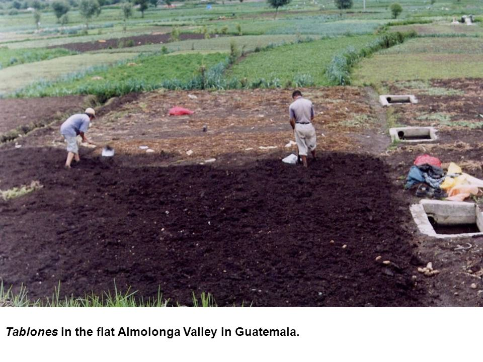 Tablones in the flat Almolonga Valley in Guatemala.