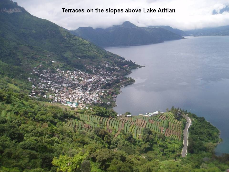 Terraces on the slopes above Lake Atitlan