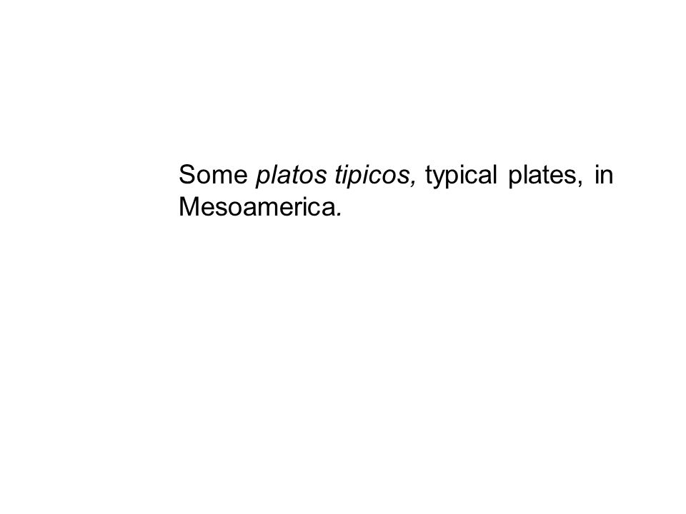 Some platos tipicos, typical plates, in Mesoamerica.