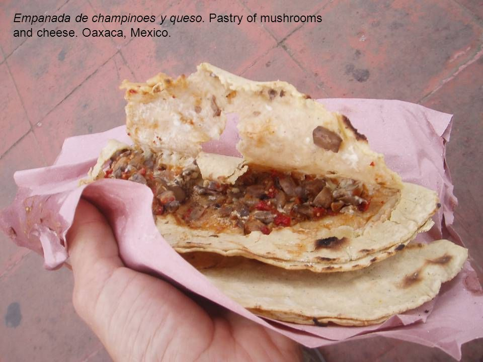 Empanada de champinoes y queso. Pastry of mushrooms and cheese. Oaxaca, Mexico.