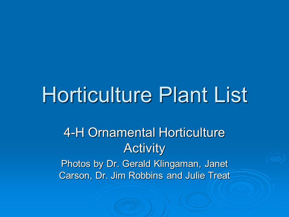 Bigleaf Hydrangea Hydrangea macrophylla Blooms in the summer. Winter – after leaves drop.
