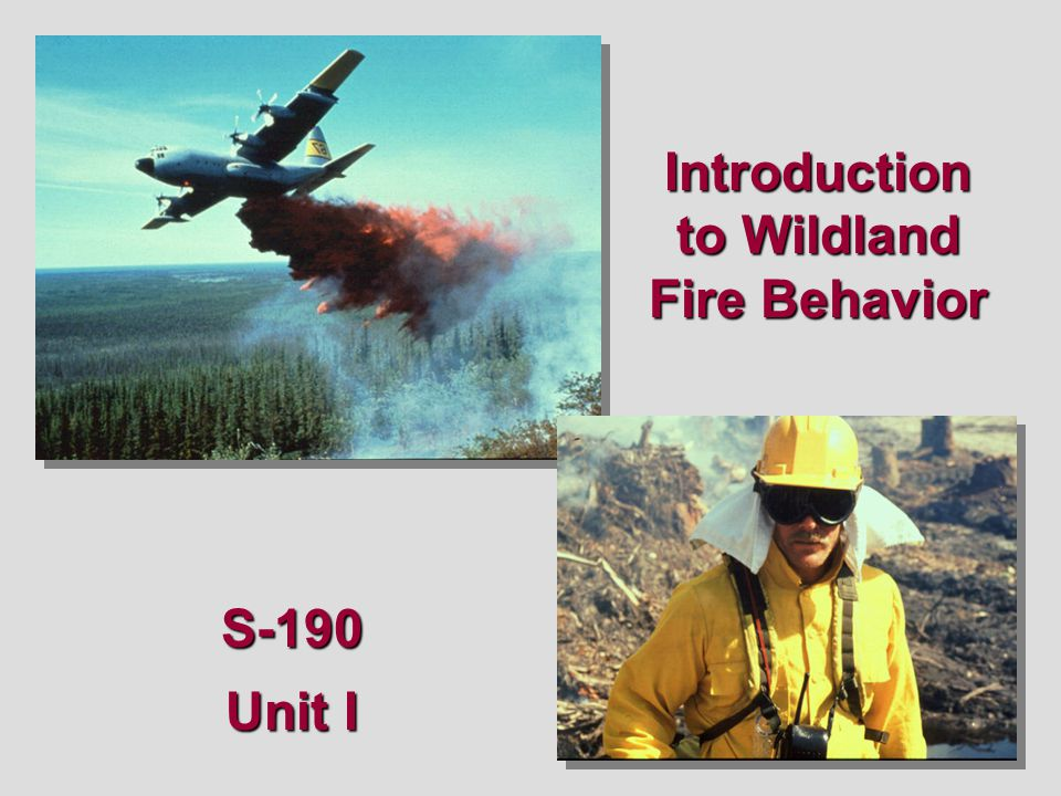 Categories of Fuel Light fuels –Leaves, grass, shrubs Light fuels catch easily and burn quickly Because they don't have much weight, they are consumed quickly These are the primary carriers of fire 01-08-S190