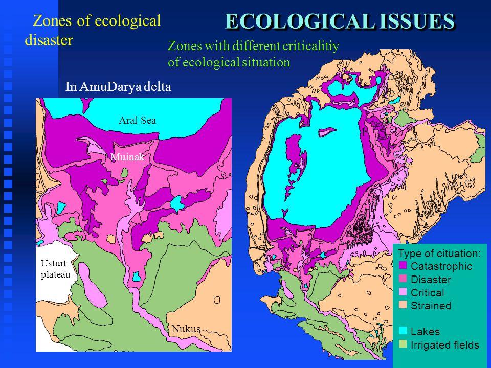 ECOLOGICAL ISSUES ECOLOGICAL ISSUES Zones of ecological disaster Zones with different criticalitiy of ecological situation Type of cituation: n n Catastrophic n n Disaster n n Critical n n Strained n n Lakes n n Irrigated fields In AmuDarya delta Nukus Muinak Aral Sea Usturt plateau