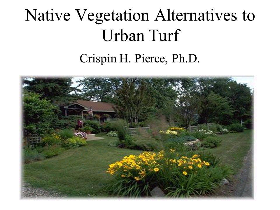 Native Vegetation Alternatives to Urban Turf Crispin H. Pierce, Ph.D.