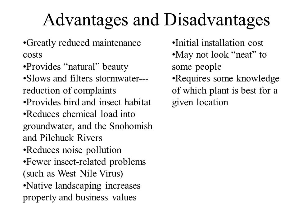Advantages and Disadvantages Greatly reduced maintenance costs Provides natural beauty Slows and filters stormwater--- reduction of complaints Provides bird and insect habitat Reduces chemical load into groundwater, and the Snohomish and Pilchuck Rivers Reduces noise pollution Fewer insect-related problems (such as West Nile Virus) Native landscaping increases property and business values Initial installation cost May not look neat to some people Requires some knowledge of which plant is best for a given location