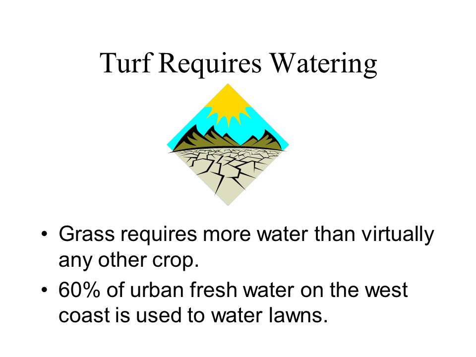 Turf Requires Watering Grass requires more water than virtually any other crop.