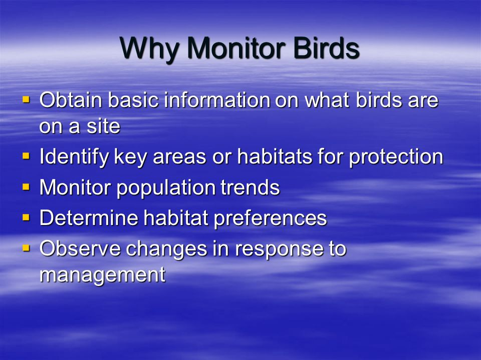 Why Monitor Birds  Obtain basic information on what birds are on a site  Identify key areas or habitats for protection  Monitor population trends 